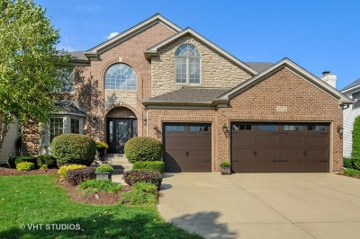 Naperville Single Family Home For Sale: 3751 Highknob Circle