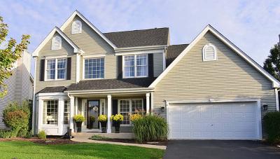 Geneva Single Family Home For Sale: 39w208 Bartelt Road
