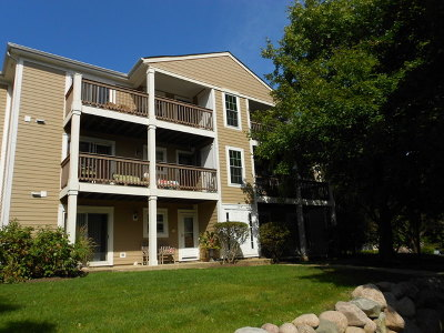 Libertyville Condo/Townhouse For Sale: 104 East Winchester Road #B