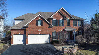 Naperville Single Family Home For Sale: 3904 Tall Grass Drive