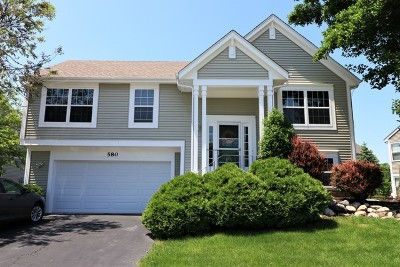 South Elgin Single Family Home For Sale: 580 West Camden Lane