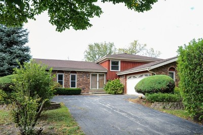 Arlington Heights Single Family Home For Sale: 1904 North Carlyle Place
