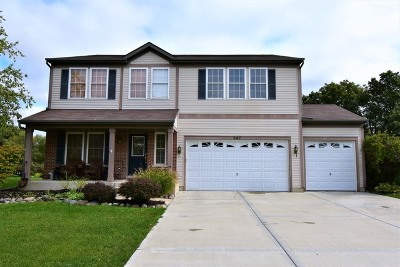 Antioch Single Family Home For Sale: 347 Pondview Drive