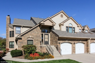 Buffalo Grove Condo/Townhouse New: 343 Satinwood Court South #10