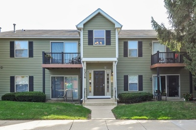 Naperville Condo/Townhouse For Sale: 1316 Mc Dowell Road #103