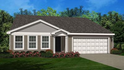 Single Family Home For Sale: 1588 Lakeland Lane