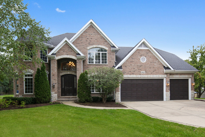 Willowbrook IL Single Family Home For Sale: $999,000