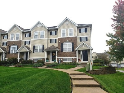 Oswego Condo/Townhouse For Sale: 112 Lakeshore Drive