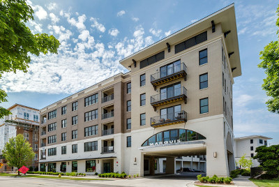 Downers Grove Condo/Townhouse For Sale: 940 Maple Avenue #408