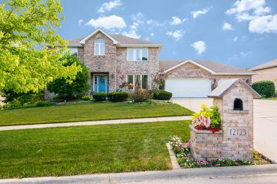 Homer Glen Single Family Home For Sale: 12123 Arlene Drive