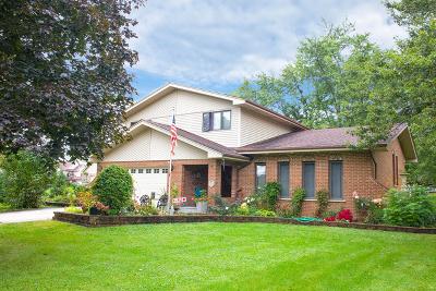 Lemont Single Family Home For Sale: 668 4th Street