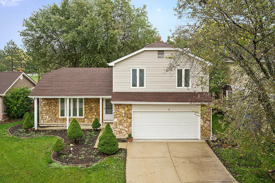 Streamwood Single Family Home For Sale: 10 Boxwood Court
