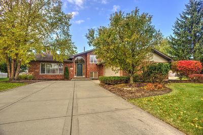 New Lenox Single Family Home For Sale: 1080 Grand Mesa Avenue