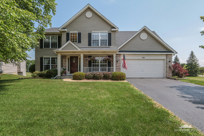 Oswego Single Family Home For Sale: 228 Parkside Lane