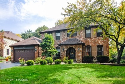 Naperville Single Family Home For Sale: 808 Biltmore Court