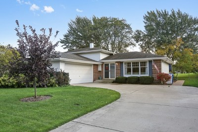 Naperville Single Family Home For Sale: 23w461 Moraine Court