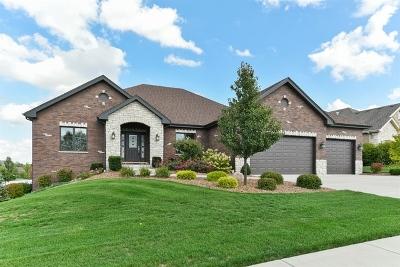 Mokena Single Family Home For Sale: 19301 Beaver Creek Court