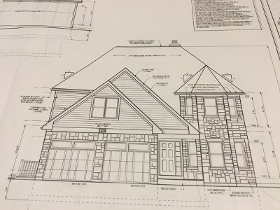 Plainfield Single Family Home For Sale: 13248 Lake Mary Drive
