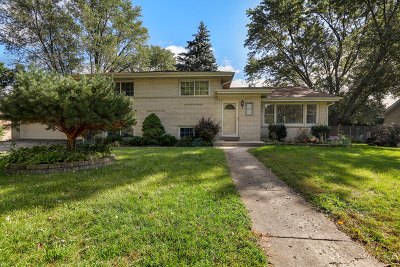 Palatine Single Family Home For Sale: 1821 North Iris Drive