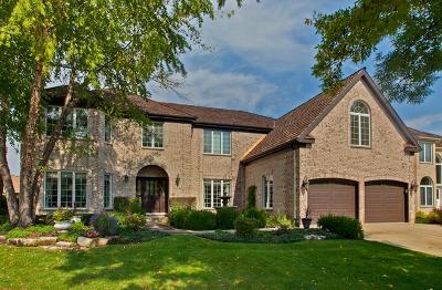 Arlington Single Family Home For Sale: 1312 East Camelot Court