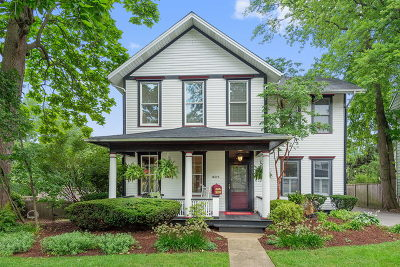 La Grange Single Family Home For Sale: 405 South Ashland Avenue