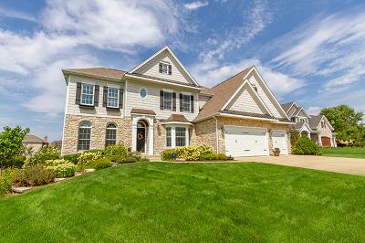 Batavia Single Family Home For Sale: 639 Ritter Drive