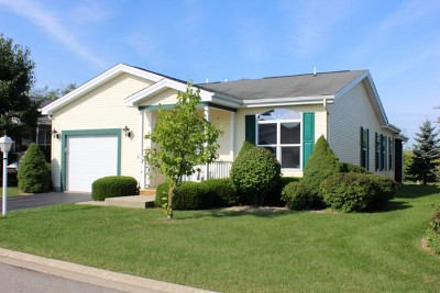 Grayslake Single Family Home For Sale: 248 Rodeo Drive