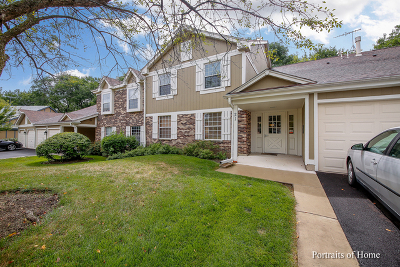 Schaumburg Condo/Townhouse For Sale: 21 Superior Court #N2