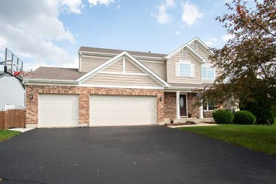 Crest Hill Single Family Home For Sale: 16523 Zausa Drive