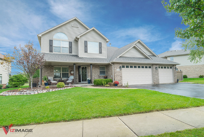 Lockport Single Family Home For Sale: 16740 West Springview Drive