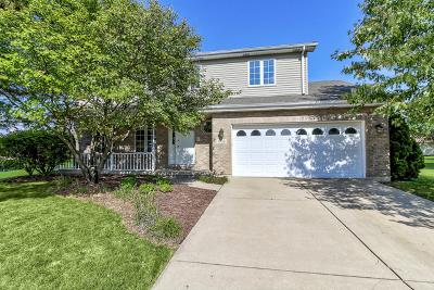 Romeoville Single Family Home For Sale: 804 Winnebago Court