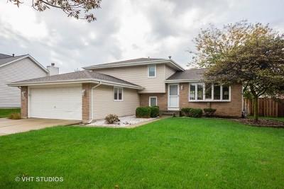 Romeoville Single Family Home For Sale: 43 Austrian Drive