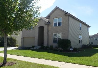 Elgin Single Family Home Re-Activated: 2886 Killarny Drive