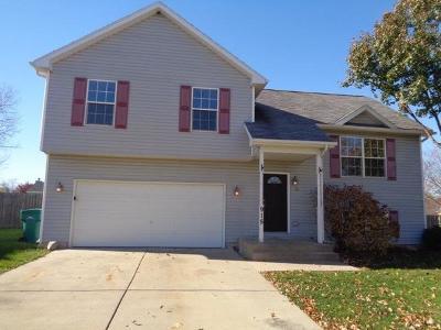 Joliet Rental For Rent: 915 North Ann Street