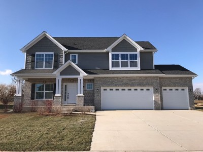 Minooka, Channahon Single Family Home For Sale: 26435 Justin Drive South