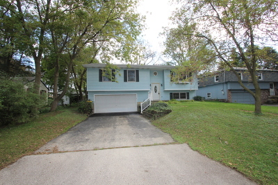 Lake In The Hills Single Family Home For Sale: 20 Hilly Lane