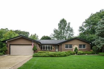 Arlington Single Family Home For Sale: 1038 South Highland Avenue
