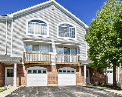Palatine Condo/Townhouse For Sale: 856 West St Johns Place