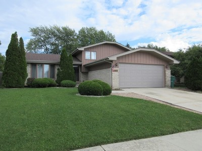 Romeoville Single Family Home For Sale: 635 Gavin Avenue