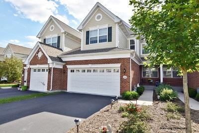 Elgin Condo/Townhouse For Sale: 1158 Falcon Ridge Drive