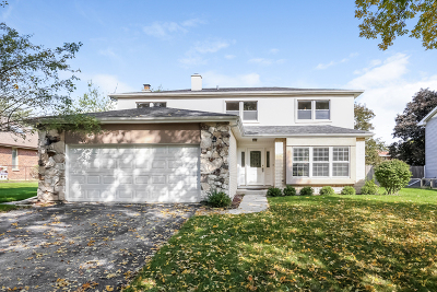 Northbrook Single Family Home For Sale: 220 Carter Court