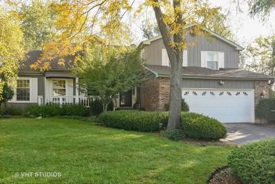 Palatine Single Family Home For Sale: 1001 South Mallard Drive