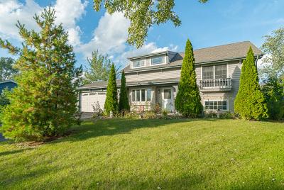 Bolingbrook Single Family Home For Sale: 118 Davis Court