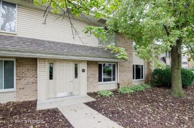 Hoffman Estates Condo/Townhouse For Sale: 1745 Robin Walk #D