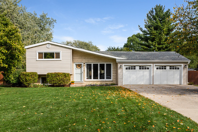 Lombard Single Family Home Contingent: 1147 South Ahrens Avenue