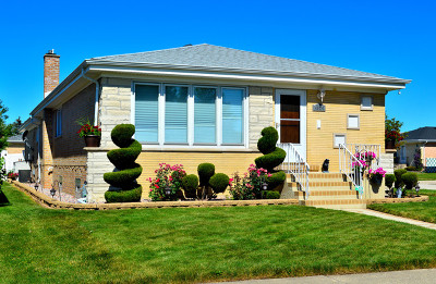Norridge Single Family Home For Sale: 4924 North Knight Avenue