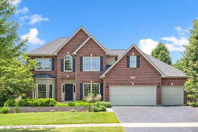 Naperville Single Family Home For Sale: 2419 New Haven Drive