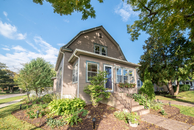 Elgin Single Family Home For Sale: 1000 Hill Avenue