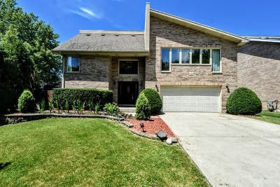 Palatine Single Family Home For Sale: 638 North Franklin Avenue