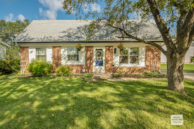 Bolingbrook Single Family Home For Sale: 165 Garden Drive